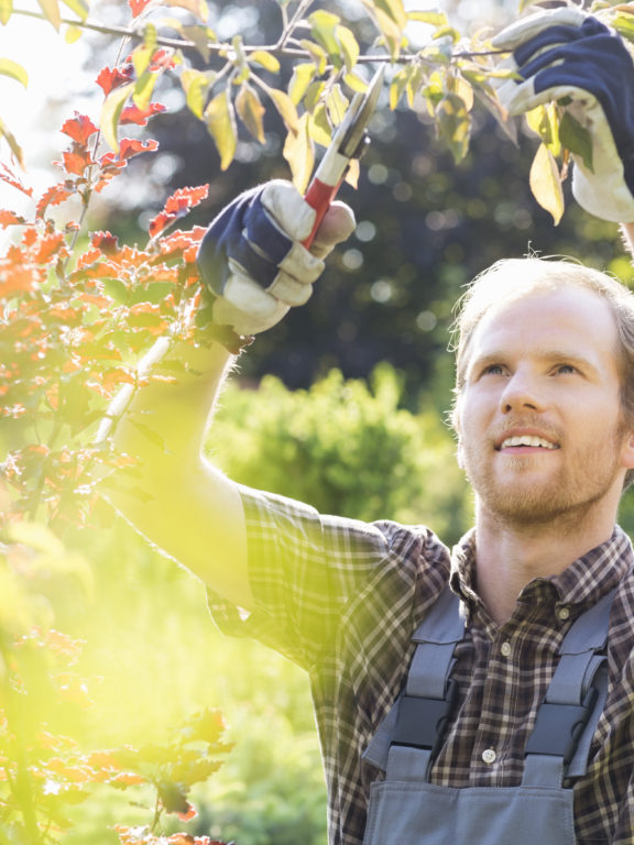 What is Garden Leave?